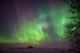 20140219_Northern Light_0134.jpg