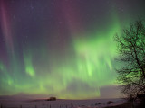 20140220_Northern Light_0032.jpg