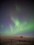 20140220_Northern Light_0071.jpg