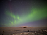20140220_Northern Light_0075.jpg