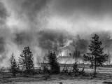20150512_Yellowstone_0150_1_2_3_4.jpg