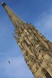 Climbing the Stephansdom