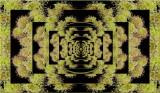 Anemone Matrix