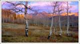 Mountain sunrise to art.