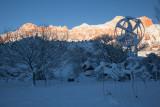 Springdale in Winter