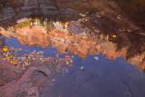North Creek reflection