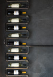 Enology & Wines