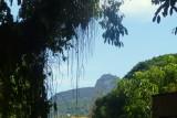 RIO DE JANEIRO 2014: PARQUE QUINTA DE BOA VISTA  02.01.2014