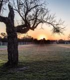 Sun Rise at the Ranch