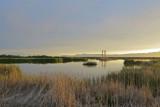 Farmington Bay Wildlife Management Area