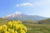 Mount Damavand National Day