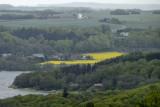 La campagne danoise / The Danish countryside