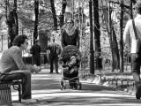 Dans un parc à Saint-Petersbourg / In a park of St. Petersburg