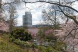 Kaiserslautern in Spring