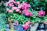 Garden tubs