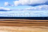 Wind farm at Redcar