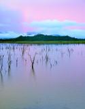 Gal Oya National Park - Sri Lanka