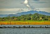Gal Oya Landscape - Sri Lanka
