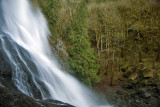Brinnon Falls - Washington State