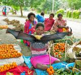 Fruit Bat for sale - Vanuatu