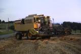 Harvester New Holland - TX65