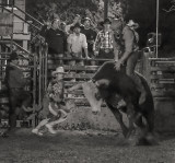 Gallery Ninety-three: Bull riding, the most dangerous eight seconds in sports -- a photo-essay