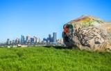 Graffitti Rock View