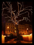 Light Tree London