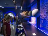 Escolares en el Planetario