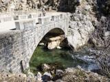 Rio Borosa, puente