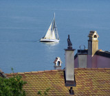 Sailing over the roof tops....