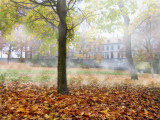 In the Castle park in a foggy morning...