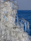Ice natural rail fence...