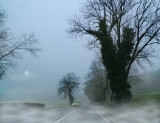 Driving home in a misty morning...