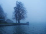 The lake of fog...