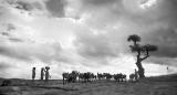 Tranche de vie à Tsaranoro