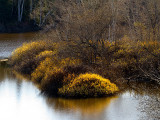sur la rivière du Loup, bassin du deuxième barrage