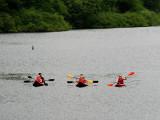 Trois kayaks