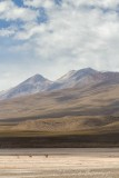 perbol_paisaje