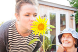 4th August 2014  Grandma's sunflower
