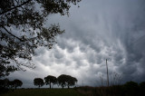 6th September 2014  mammatus clouds