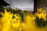 21st March 2015  spring equinox