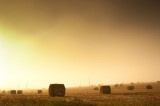 1st October 2015  fog  lifting
