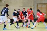 16. Februar 2014 Red Lions Frauenfeld