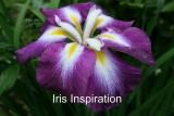 Inspiration_small.jpg