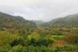 2013107898 Betws y Coed forests.jpg