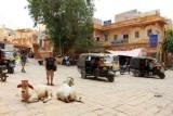 2014079043 Paul Jaisalmer.JPG