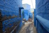2014079315 Blue alleyways Jodhpur.JPG