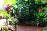 2014079848 Spice plantation Goa.JPG