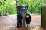 2014079883 Paul elephant Goa.JPG